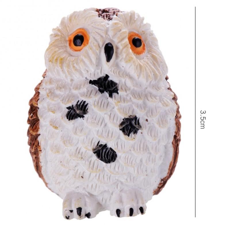 Owl Ntim