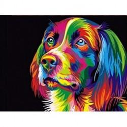 1x színes kutya keret nélküli Kézzel festett vászon olajfestmény Art Decor 40X50CM