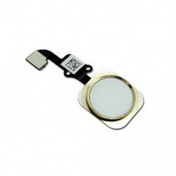 Arany Kezdőlap gomb Érintésazonosító érzékelő kulcs Flex kábel cseréje iPhone 6 és 6 Plus újhoz