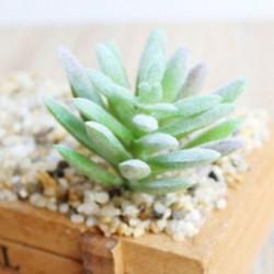4 * Szimuláció Mini műanyag miniatűr pozsgás növények Otthoni kert Iroda dekoráció