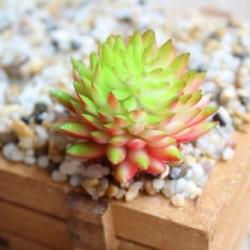 7 * Szimuláció Mini műanyag miniatűr pozsgás növények Otthoni kert Iroda dekoráció