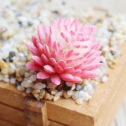8 * Szimuláció Mini műanyag miniatűr pozsgás növények Otthoni kert Iroda dekoráció