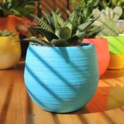 Kék Virágcserép növény öntöző ültetvényes víz tárolás zöld otthon kert dekoráció meleg