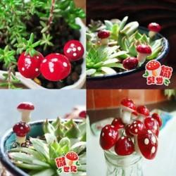 20Pcs Vörös hab Gomba Új figura kézműves növény pot kerti dísz miniatűr tündér kert dekoráció DIY