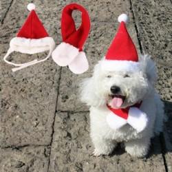 KÖZEPES - 2 darabos, kedvtelésből tartott macskakutyás Mikulás sapka és sál karácsony ünnepi jelmez