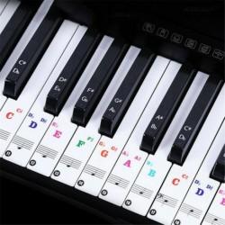 Nincs szín - Kivehető PVC zongora és billentyűzet matricák 49 61 76 88 átlátszóhoz