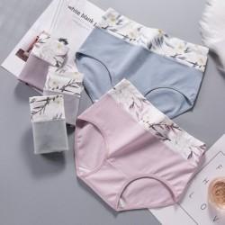 Plusz méretű női magas derekú nyomtatott bugyi pamut zökkenőmentes nadrág